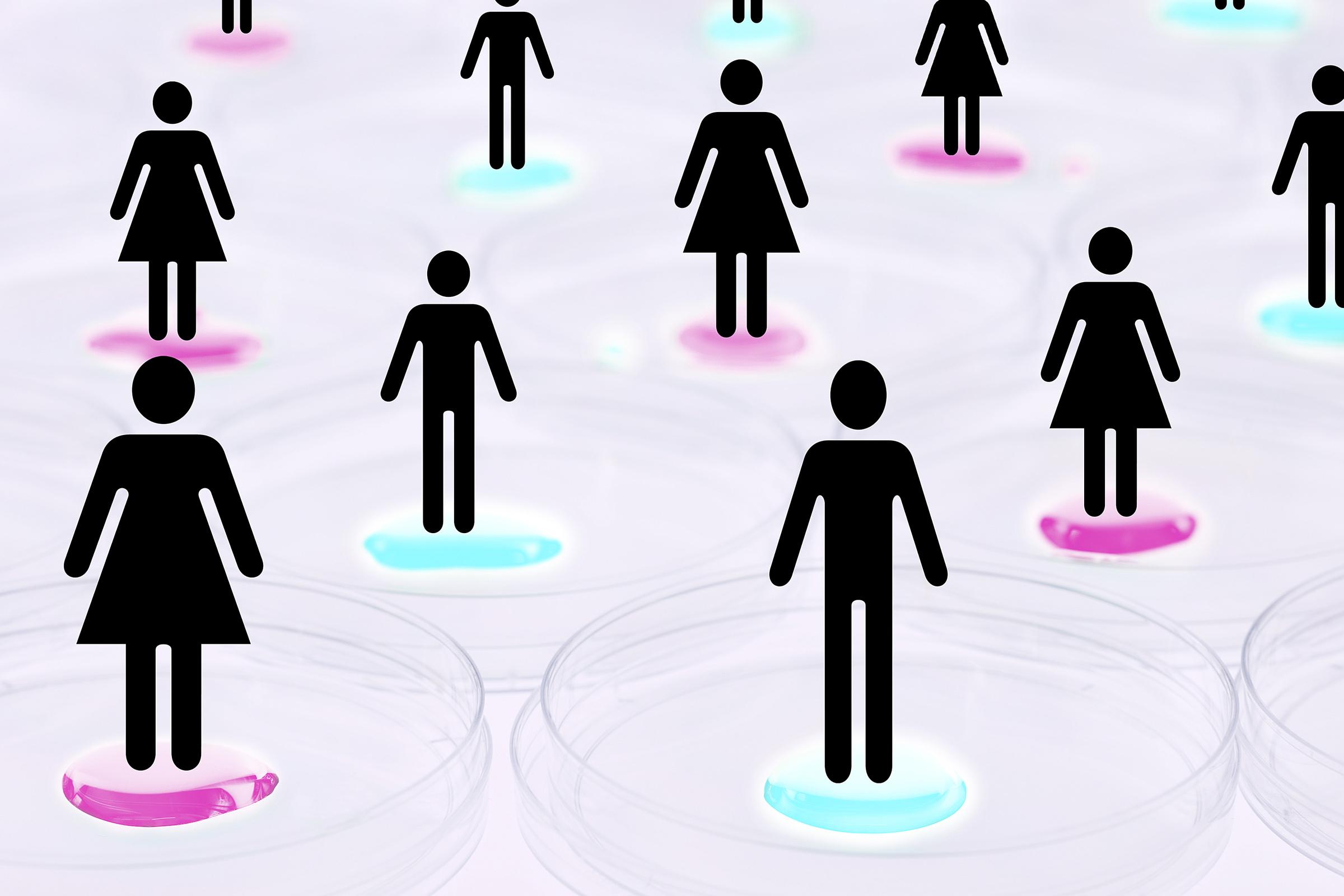 kønsroller og ligestilling blod efter samleje