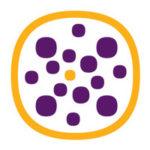 Nextwork Logo (1)